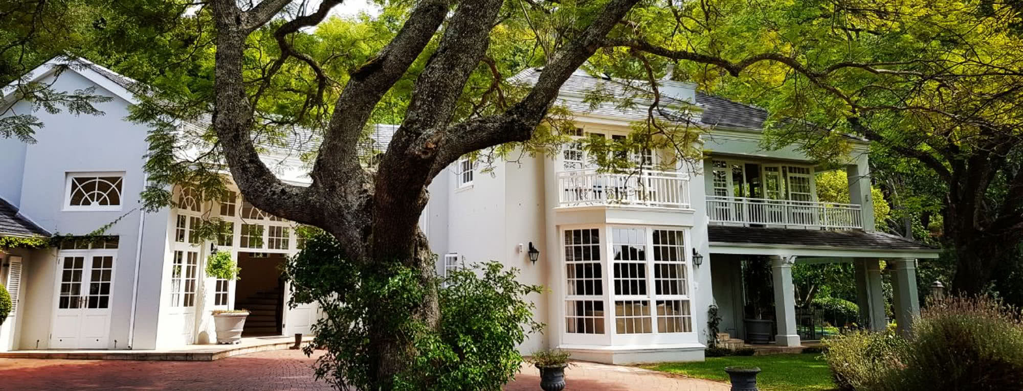 Drug Rehab and Alcohol Detox Center in Cape Town, South Africa - Main Building with Tree in Front